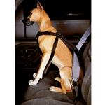 Leather Brothers Car Safety Harness