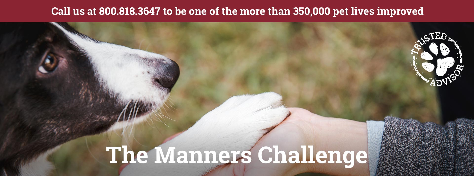 The Manners Challenge