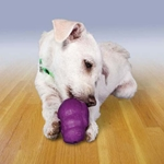 Chew and Tug Toys from Canine Company