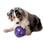 Puzzle Toys for Pets