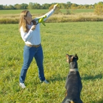 Fetch Toys For Dogs - Throwing and Retrieving Toys from Canine Company