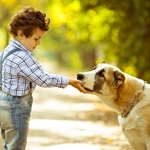 Do You Know How to Keep Kids and Dogs Safe Together?