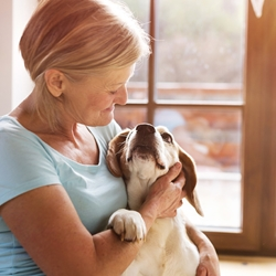 Questions to Ask the Pet Sitter for your Family's Peace of Mind