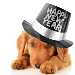 Five New Year Resolutions Pet Parents Should Make