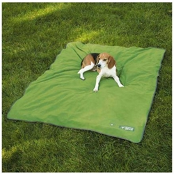 Insect Shield Blanket- Large Green