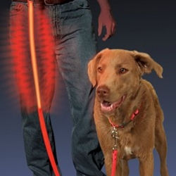 Nite Dawg® LED Pet Leash | Canine Company