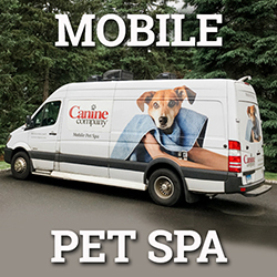 Canine Company Mobile Grooming Service