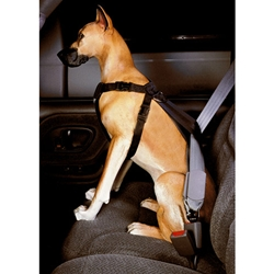 Leather Brothers Safety Car Harness - Travel, Safety, Harness