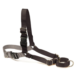 Premier Easy Walk Harness