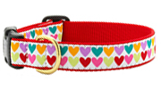 Up Country Pop Hearts Collar - No Holes