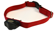 MicroLite® Plus Computer Collar®- For Boundary Plus®