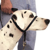 Gentle Leader Dog Harness - Keep Your Dog from Pulling and Lunging While Walking